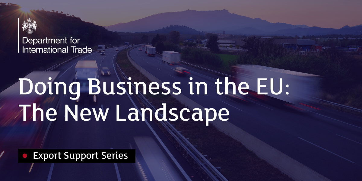 Doing Business in the EU:  The New Landscape