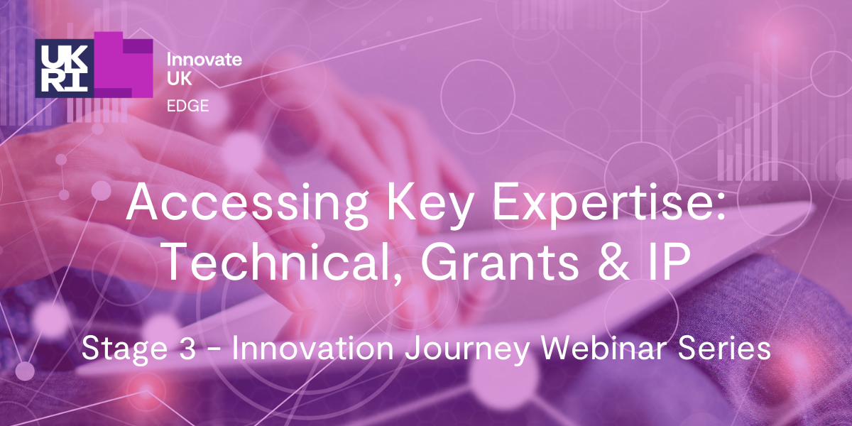 Stage 3 - Accessing Key Expertise: Technical, Grants & IP